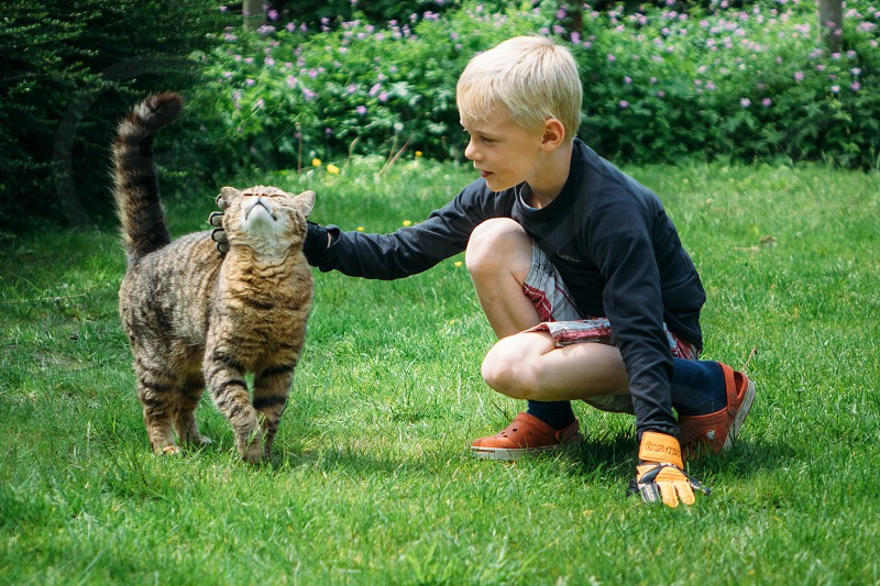 Young kid petting a cat in the garden. photo