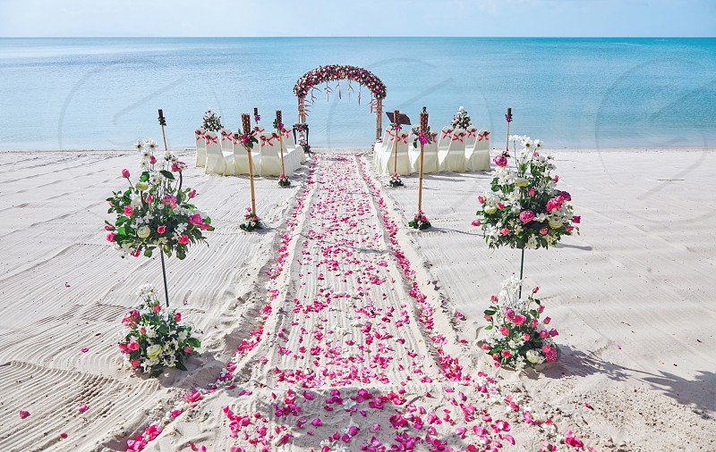 Beach wedding venue setting on the white sand with beautiful panoramic ocean view background Pink and red rose petals on the aisle photo