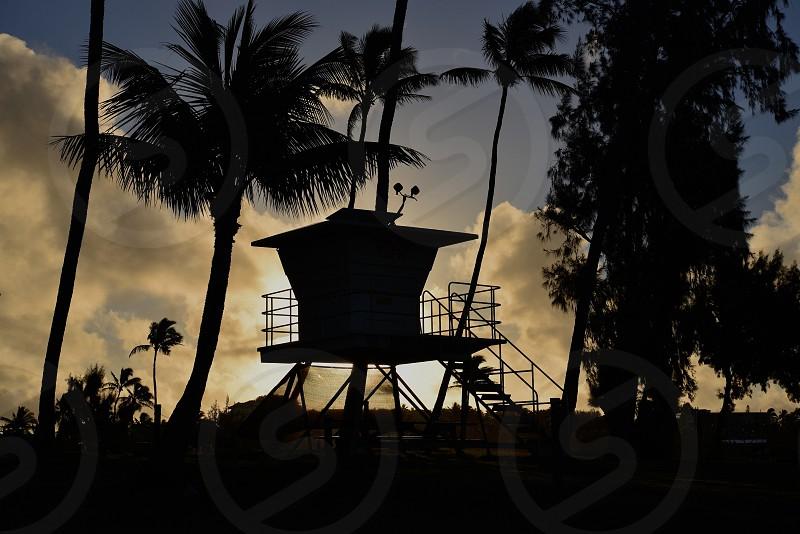 Beach Silhouette  photo