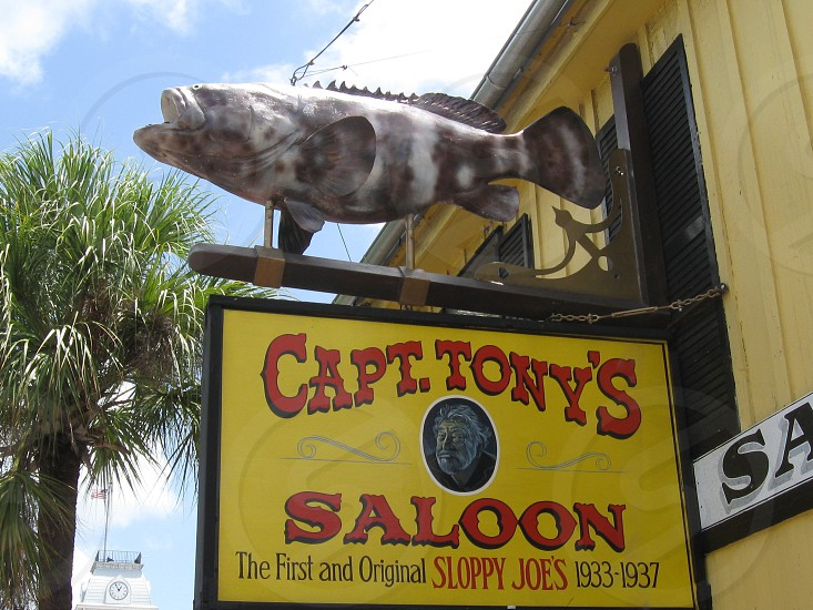 CAPTAIN TONY'S!!!!! photo