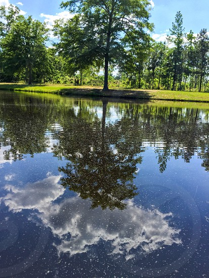 Louisiana outdoors pond sky reflection clouds water peaceful photo