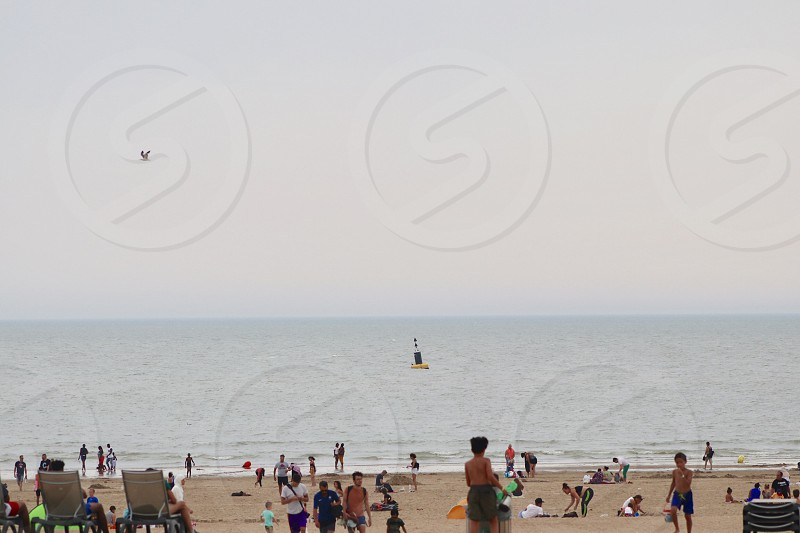 People relaxing at the beach  photo
