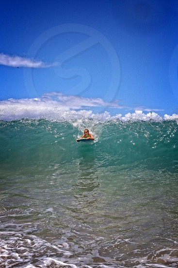 Surf'n Hawaii Maui photo