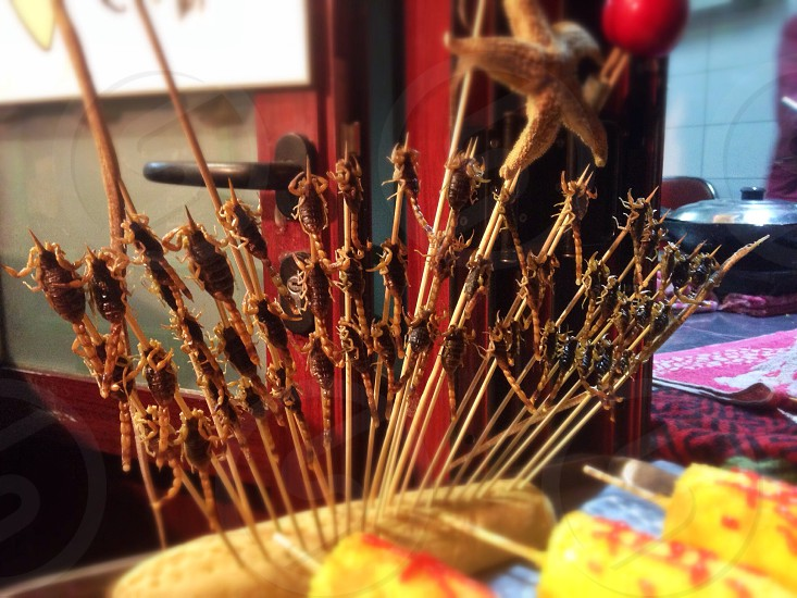 Fried scorpions or starfish on a stick anybody? Shot in Bejing China photo
