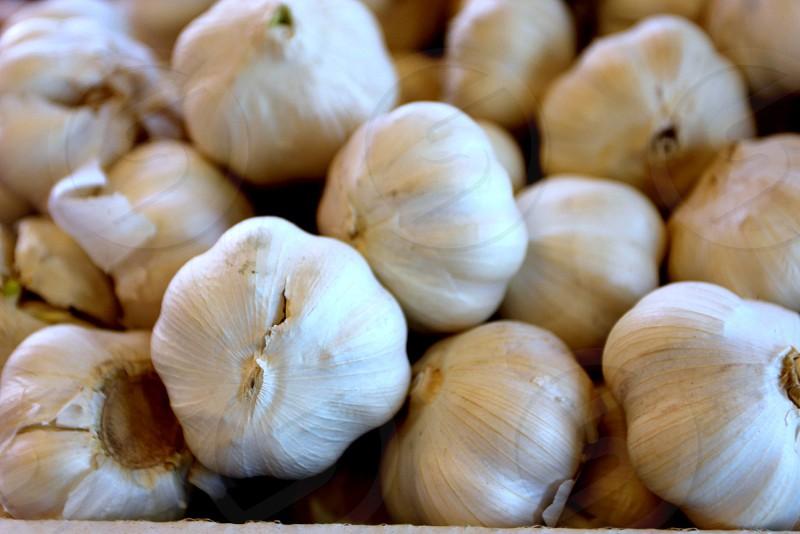 Garlic bulbs at farmers market photo