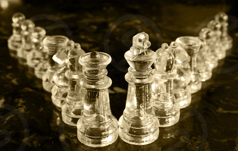 chess pieces lines hierarchy glass queen king pawn bishop knight  photo