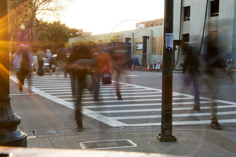 people walking on pedestrian lane photo