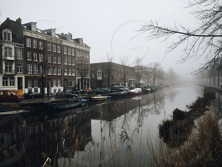 Amsterdam fog photo