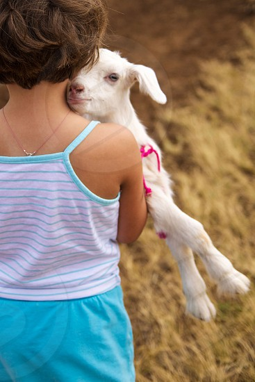Goat baby newborn country life girl farm blue pink country love photo