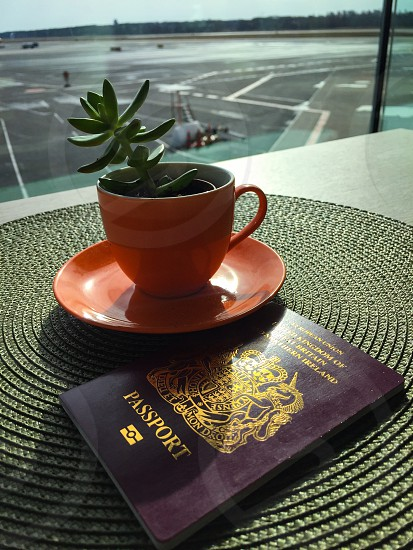 Indoor day vertical portrait window airport plane cup coffee plant succulent shrub passport GB UK Great Britain mat coaster orange green view sky Tallinn Estonia Europe European travel tourism vacation holiday  photo