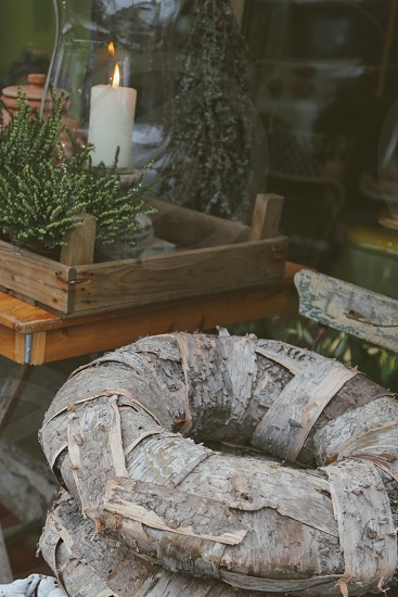Botanic market photo
