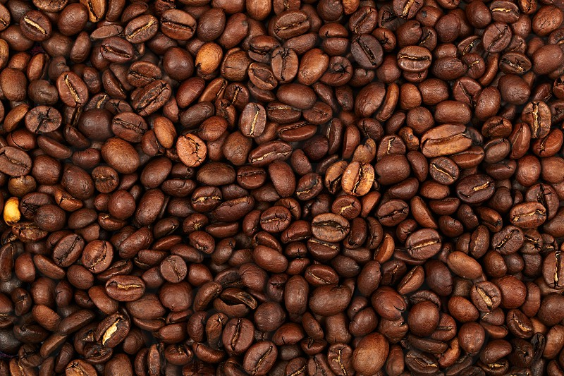 Coffee beans background. Natural morning light excellent image quality. photo