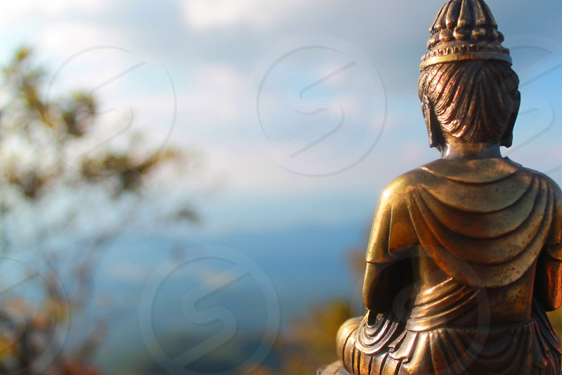 selective focus photo photography of gold-colored Buddha statue during daytime photo