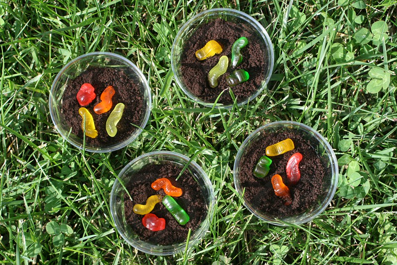 Snack of Chocolate pudding cups with cookie crumbles and gummy worms photo