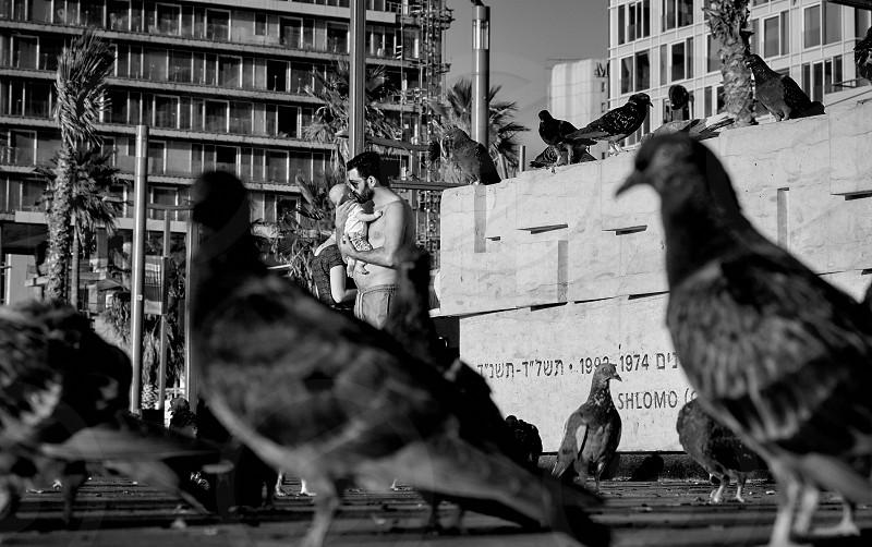 Travel to the city ... Tel Aviv 5779 ...  photo