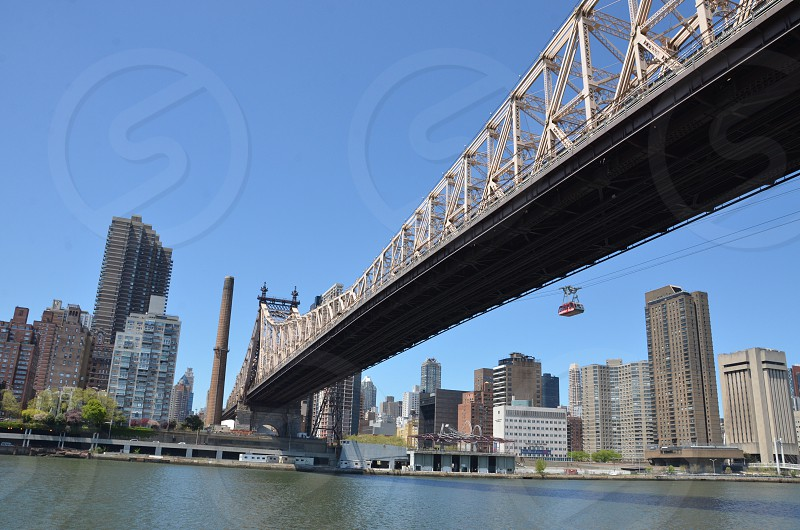 white and gray bridge and city buildings photo