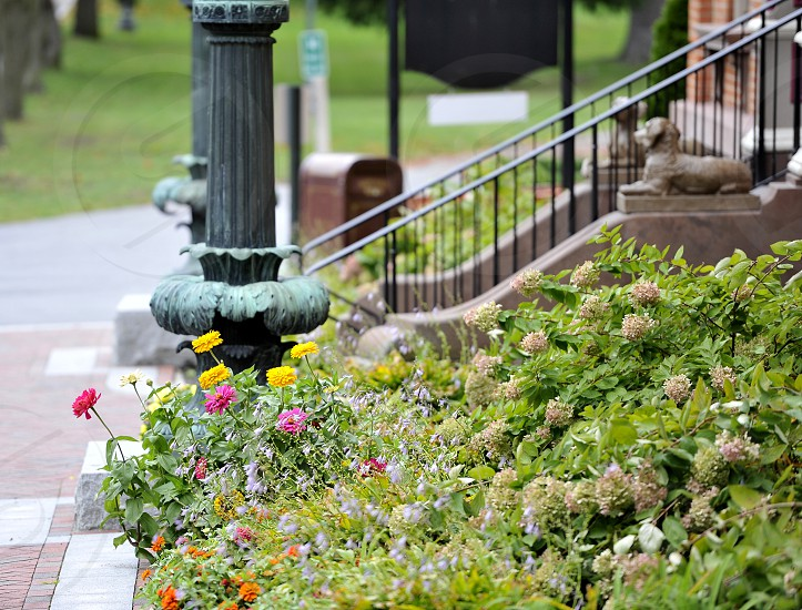 Flowers and entry to building in a park photo