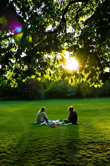London Queen's Park. New home different summer. Relax in the park during sunset.  photo