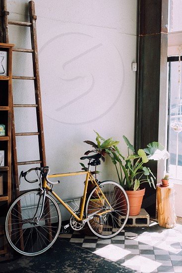 yellow road bike beside ladder and clay pot with green leaf plant photo
