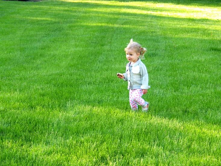 Wonder in the Grass photo