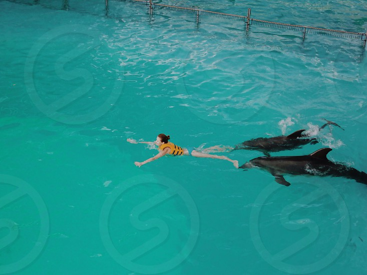 woman in yellow safety vest in pool with 2 dolphin photo