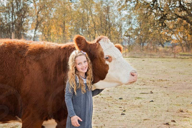 girl cow farm animal child farm life love best friends pets photo