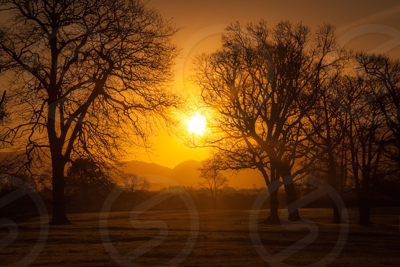 Sunset trees landscape ireland Killarney park serenity scenic colourful photo