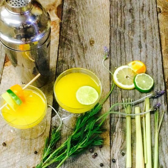 Citrus Cocktails With Silver Shaker Citrus & Botanicals photo