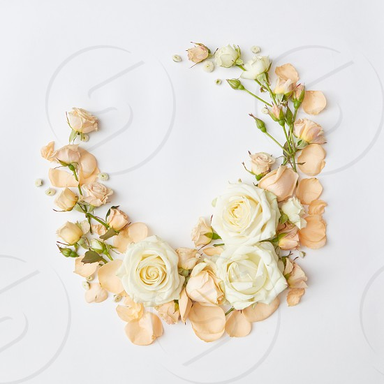 Vintage frame with beige roses isolated on white background greeting card flat lay photo