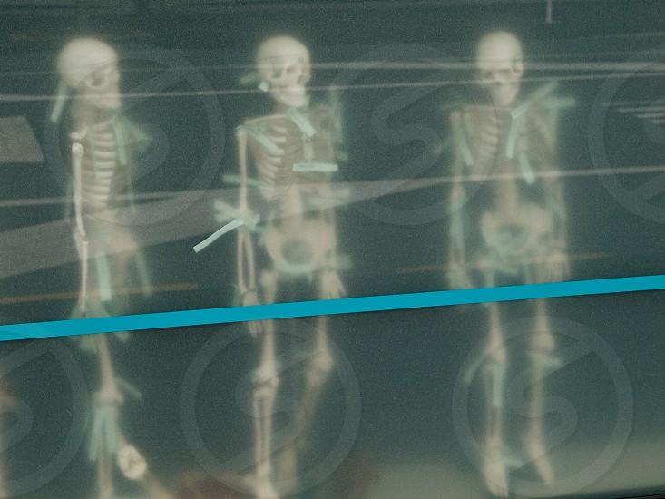 skeleton shop window blur blue line price tag street reflection photo