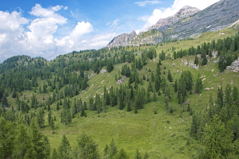 High angle view of the forest and fields in Brenta Dolomites Italy photo