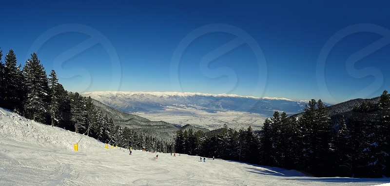Bansko resort panoramic view with ski slope in the forest and snow trees Bulgaria  photo