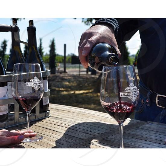 Wine tour. Sonoma County CA photo
