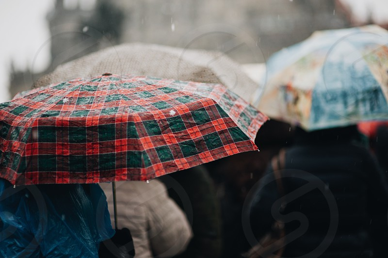 rain drops water rainy wet rainy day autumn spring cold humidity freshness photo