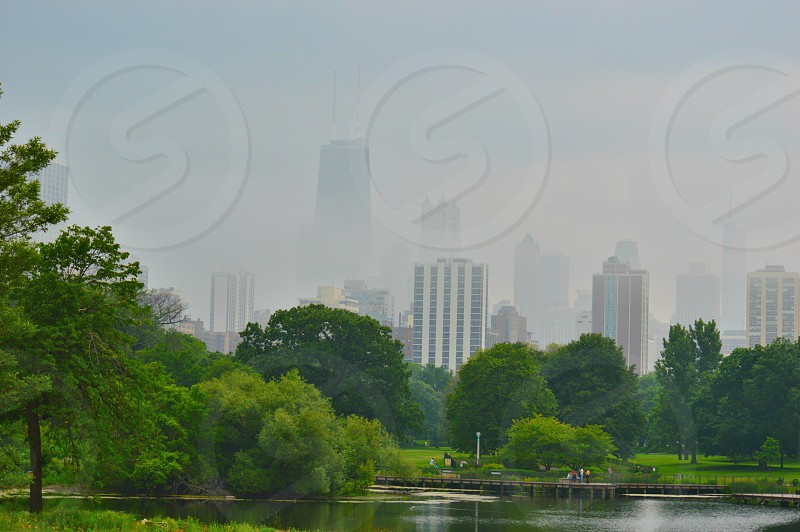 Hazy Shade of Chicago photo
