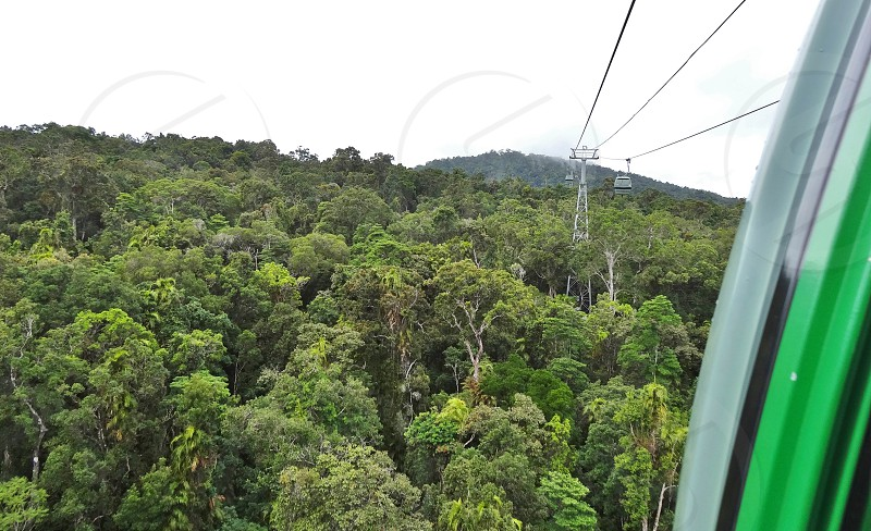 Skyrail Rainforest Cableway - Cairns Australia photo
