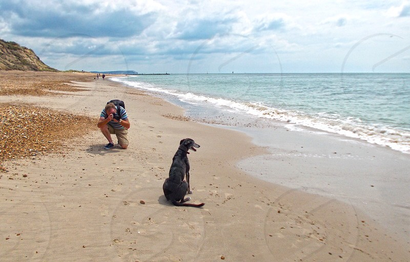 man taking a picture of black greyhound dog sitting on seashore line photo