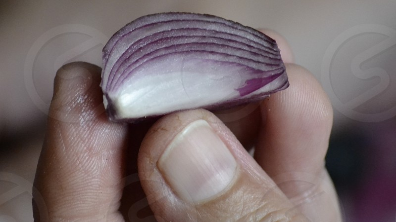 Layers of an onion & fingerprints photo