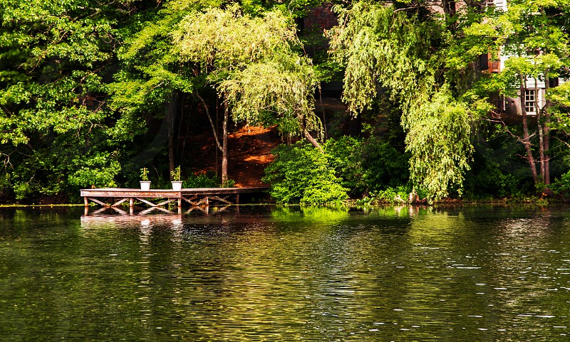 Pond lake porch broad walk summer photo