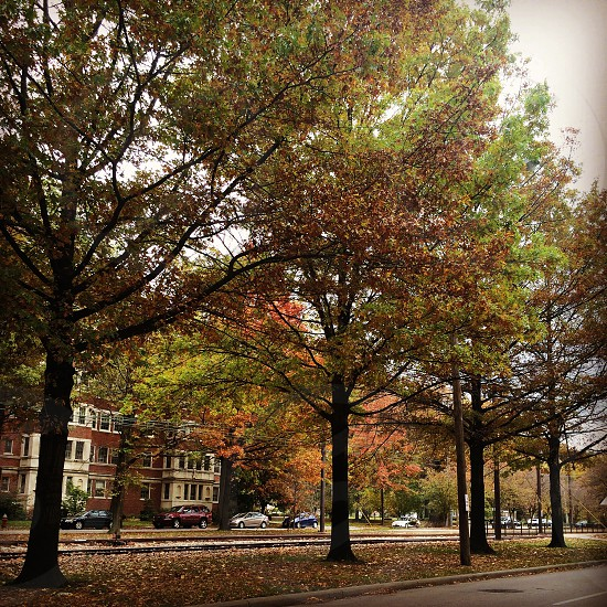 Shaker square Cleveland Ohio. Old beautiful architecture in harmony with nature  photo