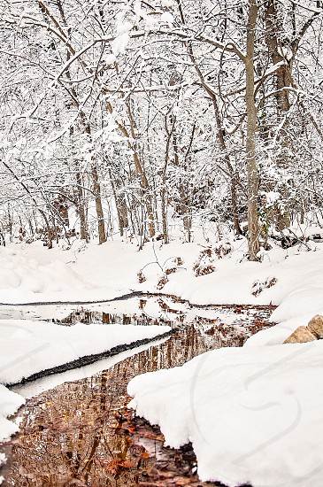 WINTER WONDERLAND | Our little creek running through the snow I love the reflection of the trees in the creek. photo