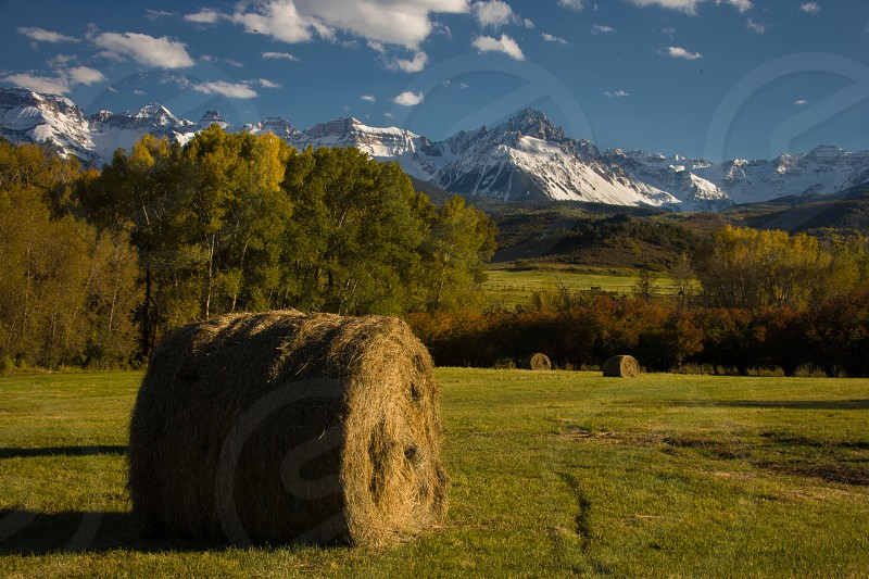 Fresh haystacks spread across field below Mount Sneffels near Ridgway Colorado photo