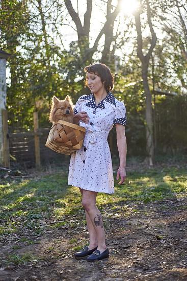 Companionship companion puppy animal summer photo