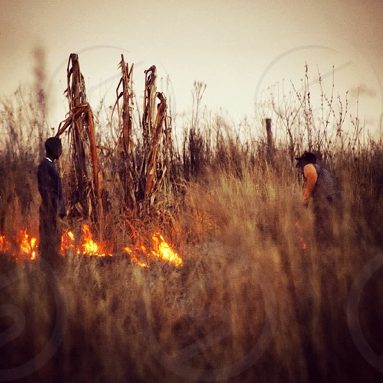 Field slash and burn Africa farming harvest plants live off the land fire flames crops photo