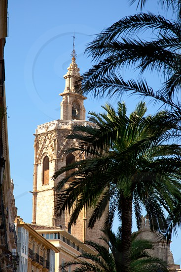 Valencia El Miguelete Micalet cathedral with palm trees photo