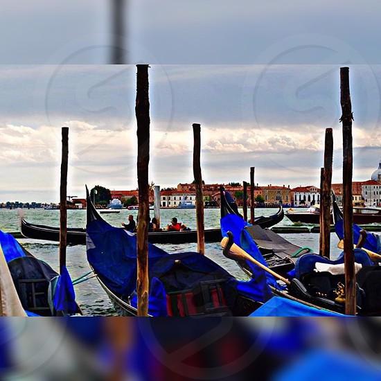 Venezia Venice photo