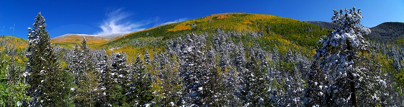 Patchwork of fall color in the Sangre de Cristo mountains of New Mexico. Evergreens and Aspens mingle with early snows. photo