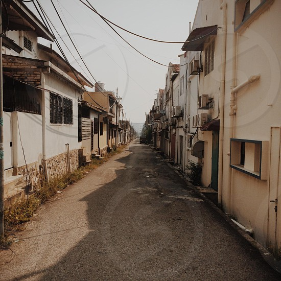 Backlane finds  photo