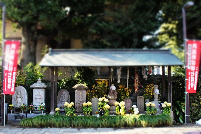 japanes shrine  photo