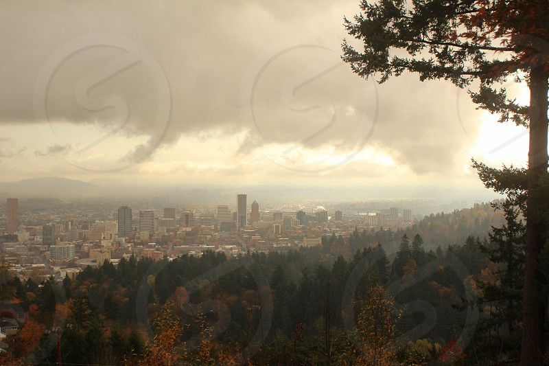 View of Portland from the Pittock Mansion in Autumn photo